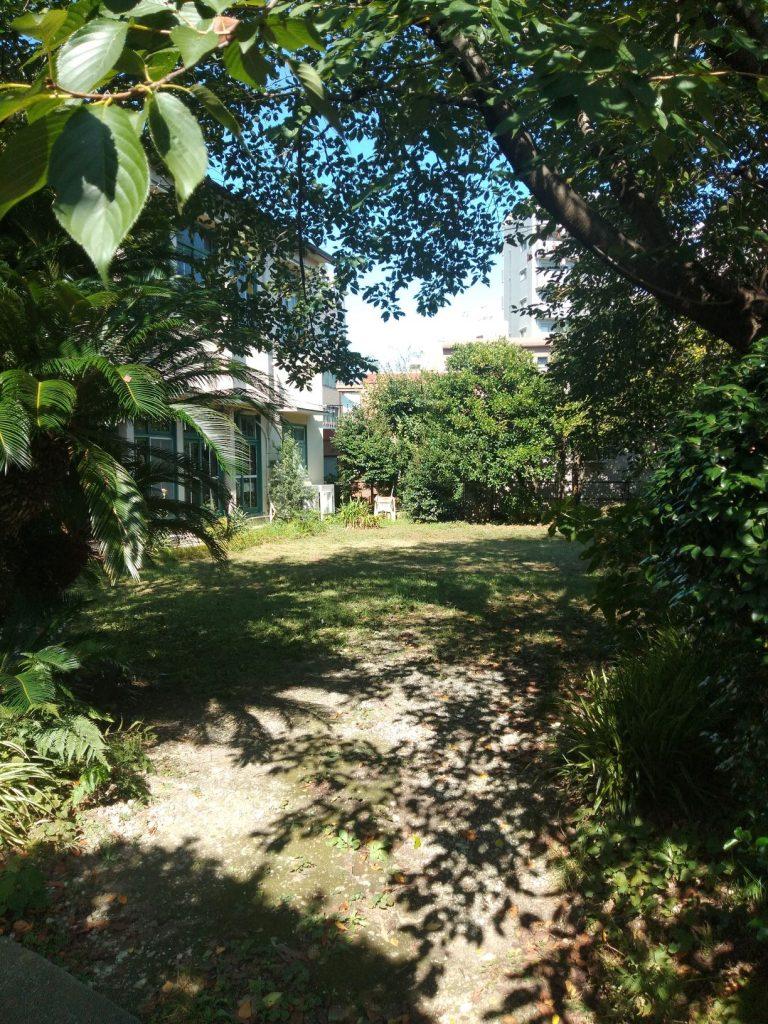 草刈後の庭